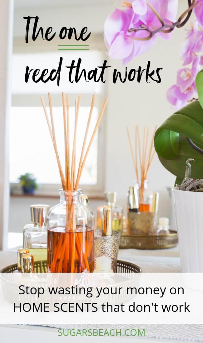 How To Make Your House Smell Good Like The Beach Sugarsbeach Com